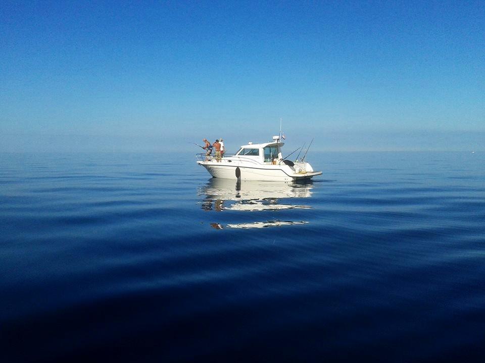 лодки для рыбалки цены